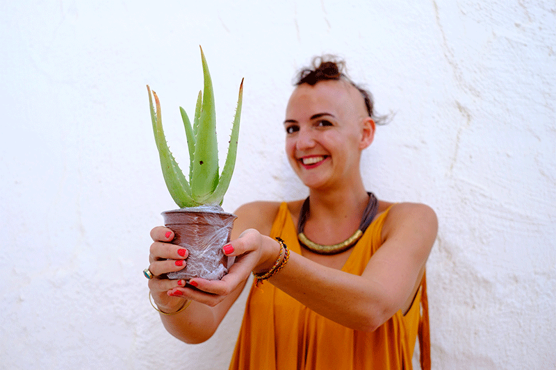 Can this particular aloe vera help my hair loss!?!